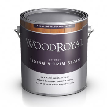ACE Wood Royal House&Trim Latex Solid Stain